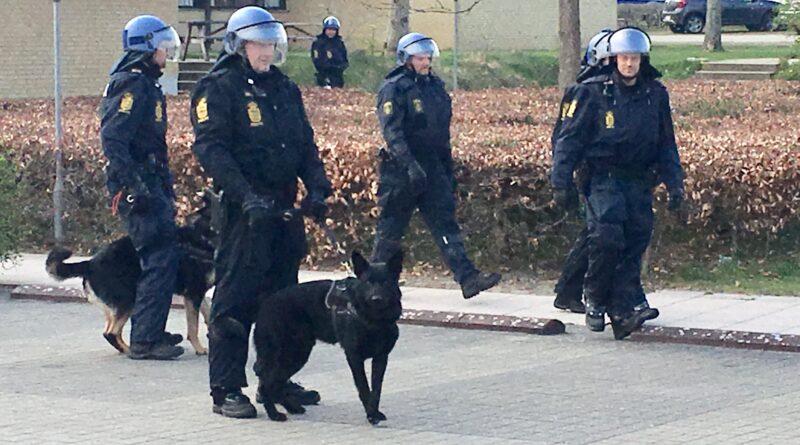 Politi med hunde beskytter youtuberen Rasmus Paludan Foto Jens Work Kristensen