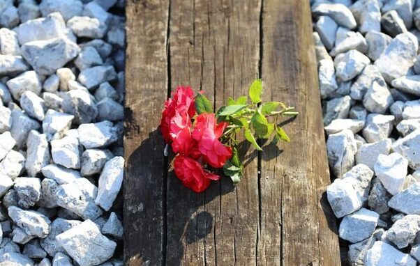 Ung mand tiltalt for at dele fotos og video af dræbte passagerer efter togulykken på Storebælt 2. januar 2019. Det skriver HovsaDeling.dk. Foto: Goran Horvat/Pixabay.
